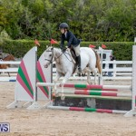 RES Hunter Jumper Show Bermuda, March 17 2019-1861