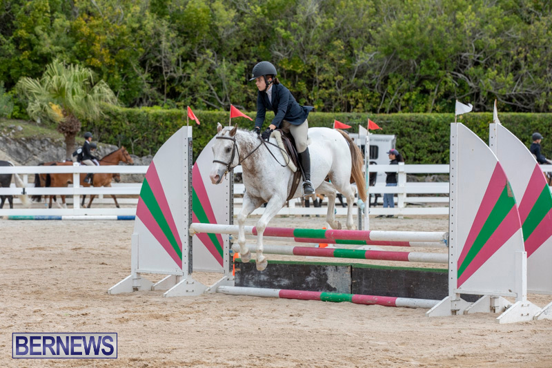 RES-Hunter-Jumper-Show-Bermuda-March-17-2019-1861