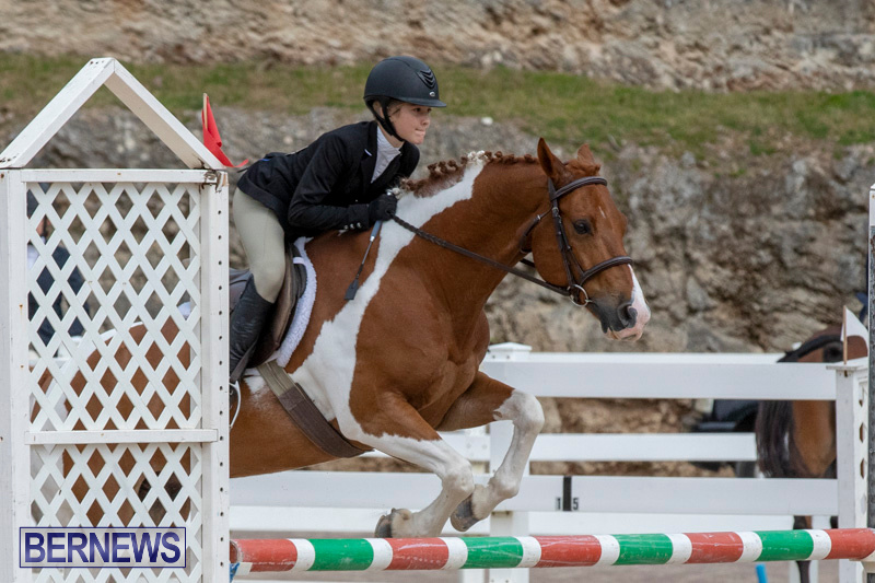 RES-Hunter-Jumper-Show-Bermuda-March-17-2019-1864