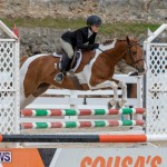 RES Hunter Jumper Show Bermuda, March 17 2019-1865