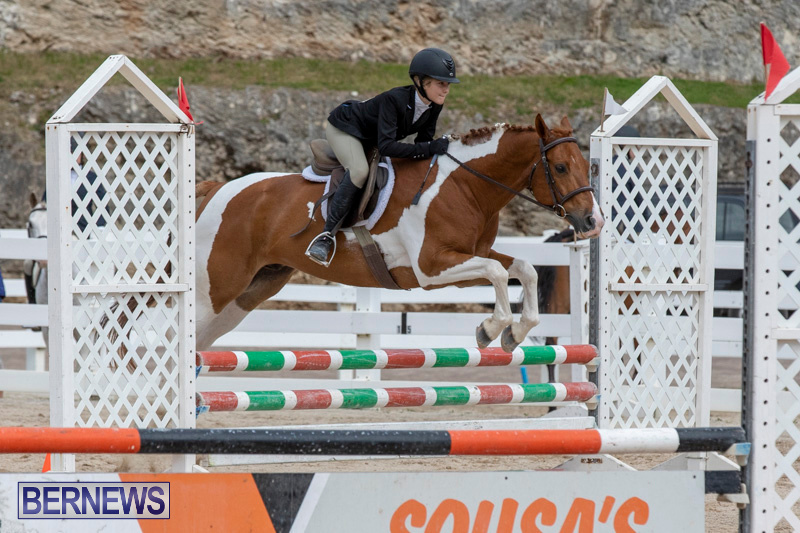 RES-Hunter-Jumper-Show-Bermuda-March-17-2019-1865
