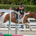 RES Hunter Jumper Show Bermuda, March 17 2019-1868