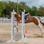 RES Hunter Jumper Show Bermuda, March 17 2019-1874