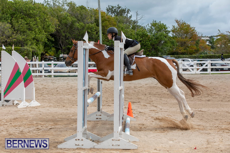 RES-Hunter-Jumper-Show-Bermuda-March-17-2019-1874