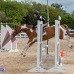RES Hunter Jumper Show Bermuda, March 17 2019-1875