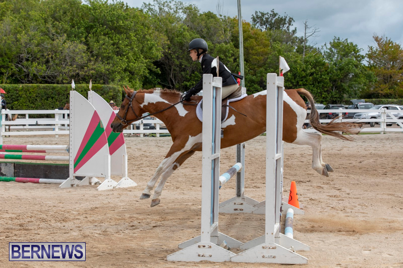 RES-Hunter-Jumper-Show-Bermuda-March-17-2019-1875