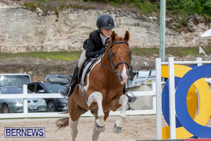 RES-Hunter-Jumper-Show-Bermuda-March-17-2019-1884