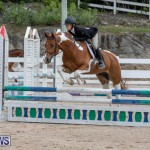 RES Hunter Jumper Show Bermuda, March 17 2019-1890