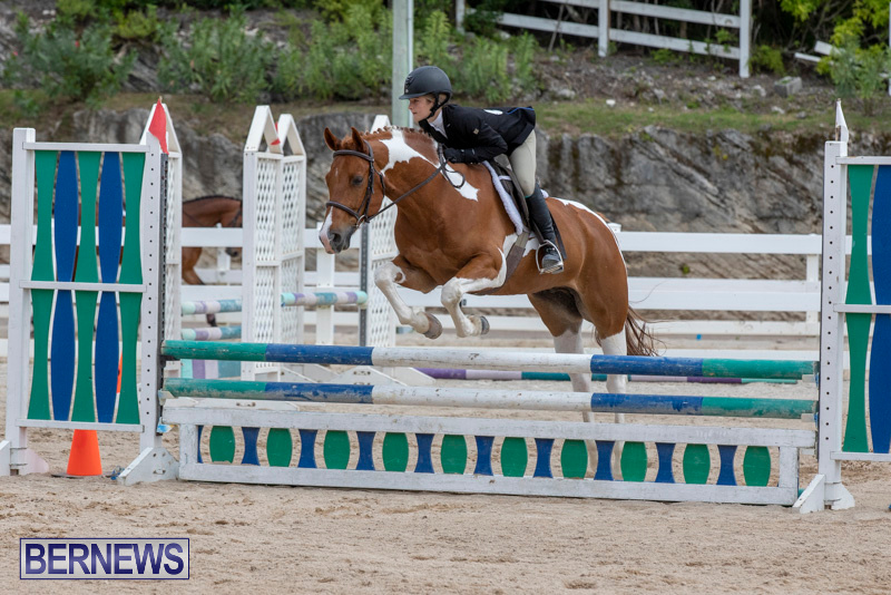 RES-Hunter-Jumper-Show-Bermuda-March-17-2019-1890