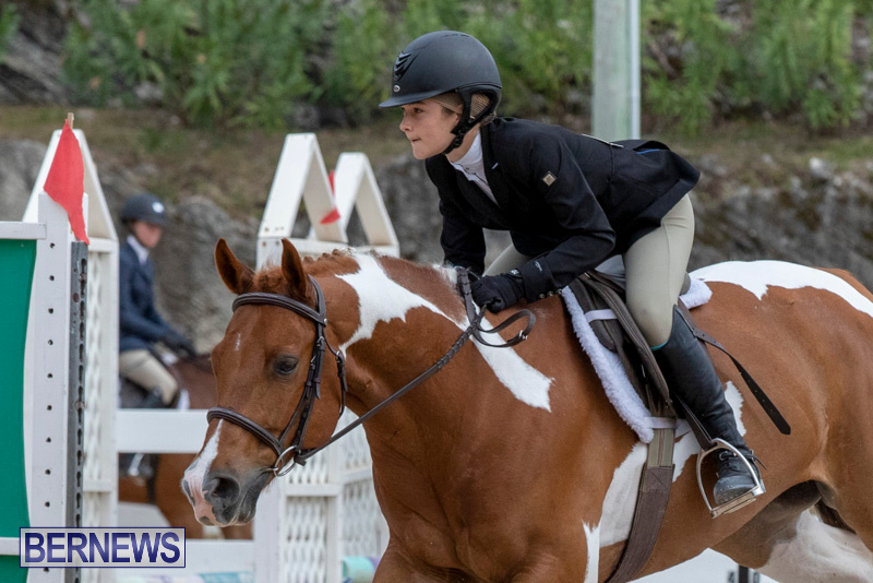 RES-Hunter-Jumper-Show-Bermuda-March-17-2019-1891