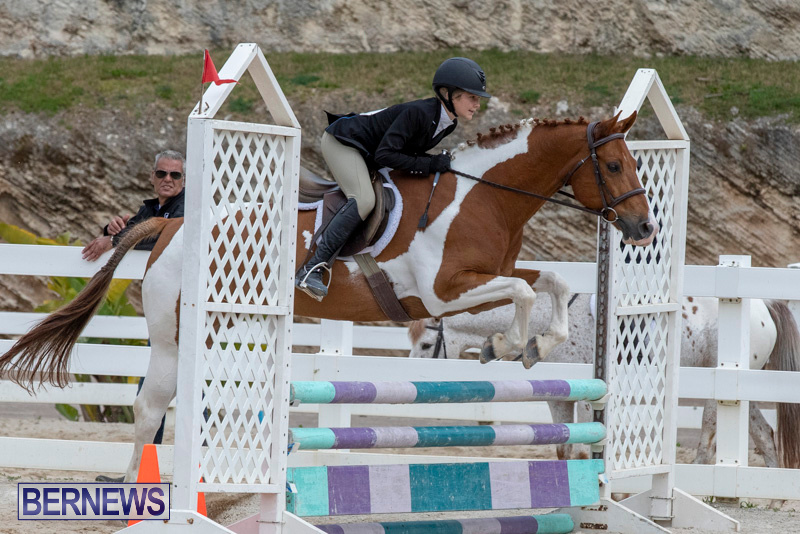 RES-Hunter-Jumper-Show-Bermuda-March-17-2019-1898
