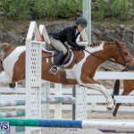 RES Hunter Jumper Show Bermuda, March 17 2019-1902