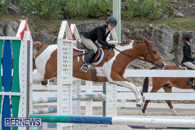 RES-Hunter-Jumper-Show-Bermuda-March-17-2019-1902