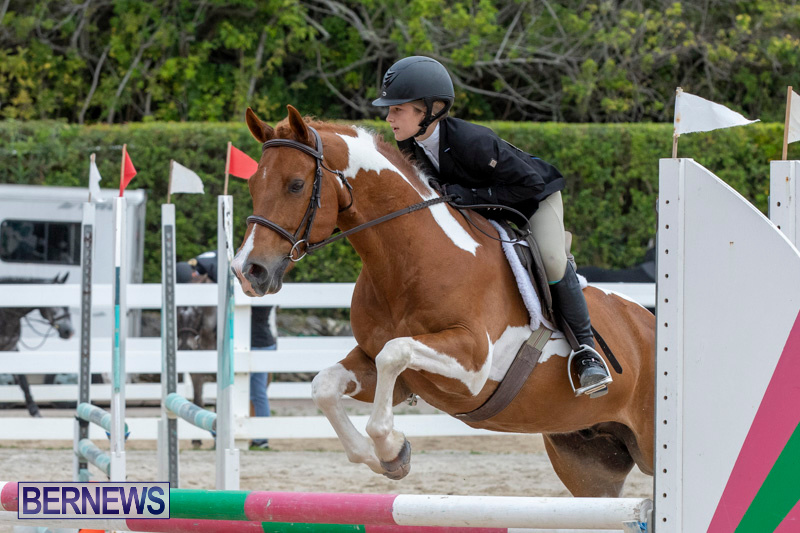 RES-Hunter-Jumper-Show-Bermuda-March-17-2019-1904