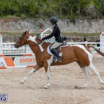 RES Hunter Jumper Show Bermuda, March 17 2019-1909