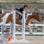 RES Hunter Jumper Show Bermuda, March 17 2019-1911