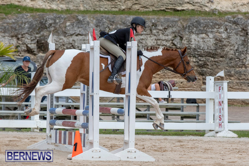 RES-Hunter-Jumper-Show-Bermuda-March-17-2019-1911
