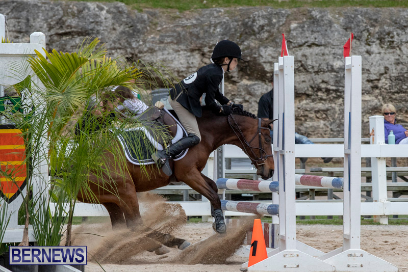 RES-Hunter-Jumper-Show-Bermuda-March-17-2019-1924