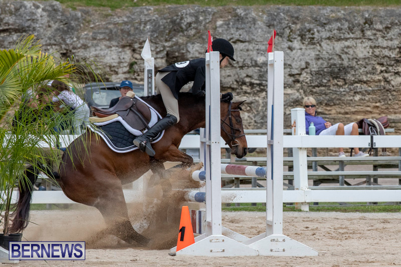 RES-Hunter-Jumper-Show-Bermuda-March-17-2019-1925