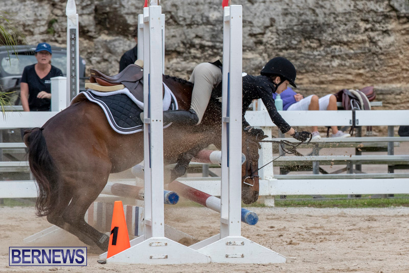 RES-Hunter-Jumper-Show-Bermuda-March-17-2019-1927