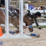 RES Hunter Jumper Show Bermuda, March 17 2019-1928