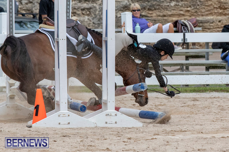 RES-Hunter-Jumper-Show-Bermuda-March-17-2019-1928