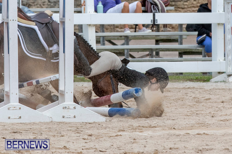 RES-Hunter-Jumper-Show-Bermuda-March-17-2019-1929