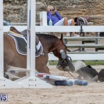 RES Hunter Jumper Show Bermuda, March 17 2019-1931