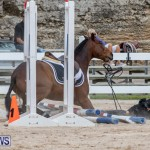 RES Hunter Jumper Show Bermuda, March 17 2019-1933