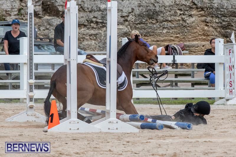 RES-Hunter-Jumper-Show-Bermuda-March-17-2019-1933