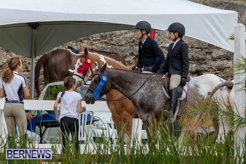 RES-Hunter-Jumper-Show-Bermuda-March-17-2019-1938