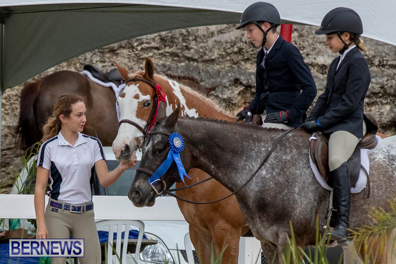 RES-Hunter-Jumper-Show-Bermuda-March-17-2019-1950