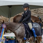 RES Hunter Jumper Show Bermuda, March 17 2019-1974