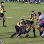 Rugby Americas North Test Match Bermuda vs Jamaica, March 9 2019-0849