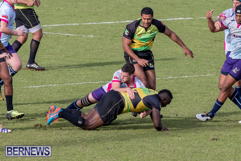 Rugby-Americas-North-Test-Match-Bermuda-vs-Jamaica-March-9-2019-0851