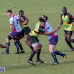 Rugby Americas North Test Match Bermuda vs Jamaica, March 9 2019-0874