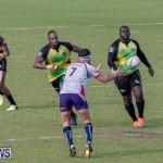 Rugby Americas North Test Match Bermuda vs Jamaica, March 9 2019-0907