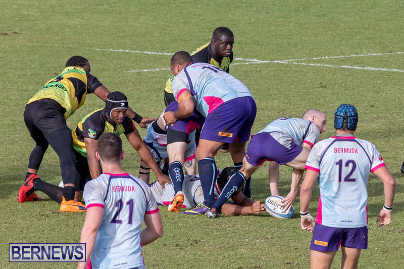 Rugby-Americas-North-Test-Match-Bermuda-vs-Jamaica-March-9-2019-0932