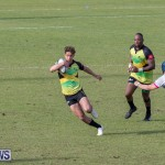 Rugby Americas North Test Match Bermuda vs Jamaica, March 9 2019-0946