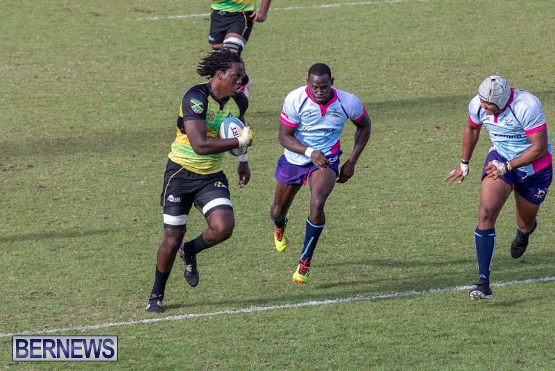 Rugby-Americas-North-Test-Match-Bermuda-vs-Jamaica-March-9-2019-0986