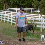 WindReach Walk And Roll Bermuda, March 24 2019-6019