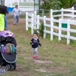 WindReach Walk And Roll Bermuda, March 24 2019-6031