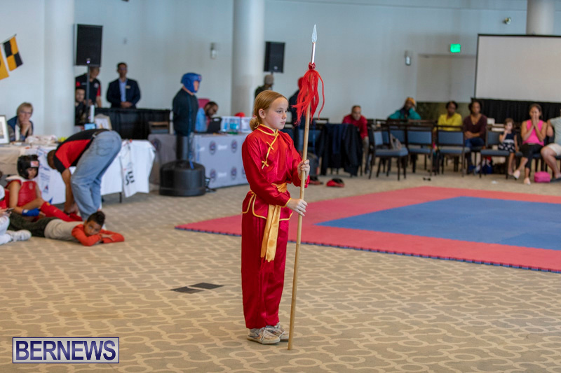 Women-in-Sports-Expo-Bermuda-March-9-2019-0545