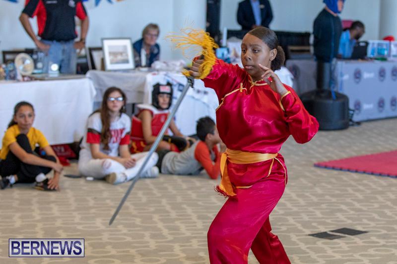 Women-in-Sports-Expo-Bermuda-March-9-2019-0605