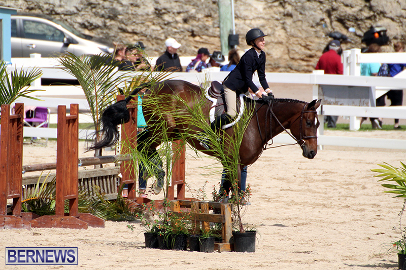 equestrian-Bermuda-Mar-27-2019-1