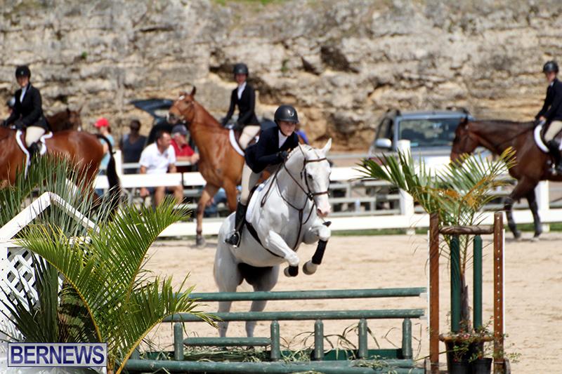 equestrian-Bermuda-Mar-27-2019-10