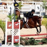 equestrian Bermuda Mar 27 2019 (11)