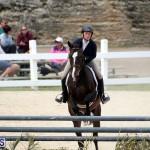 equestrian Bermuda Mar 27 2019 (14)