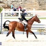 equestrian Bermuda Mar 27 2019 (15)