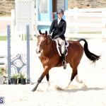 equestrian Bermuda Mar 27 2019 (16)